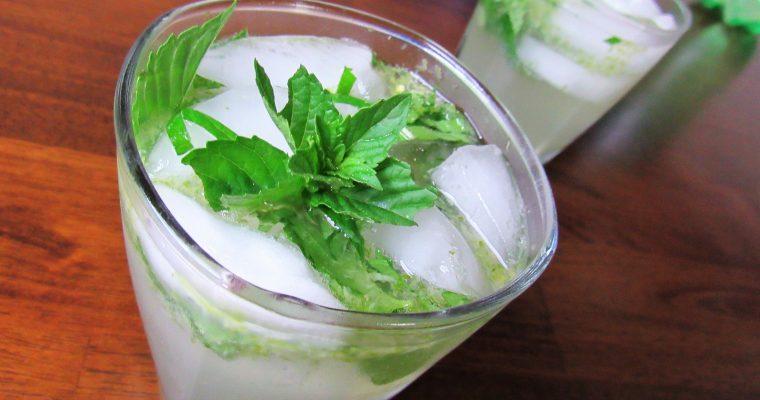 Icy Mojito Mocktail